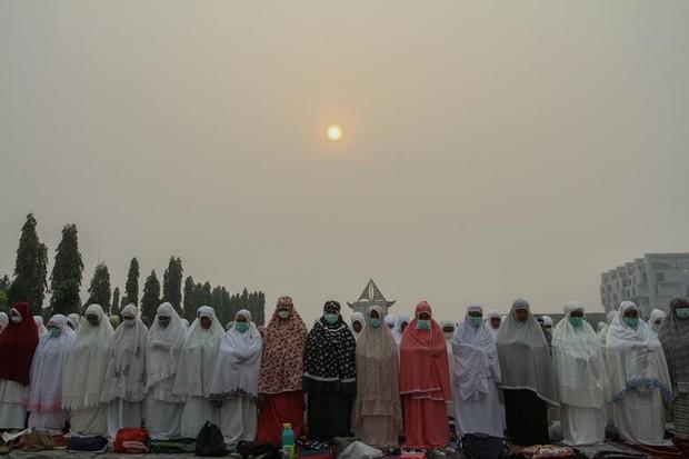 Cháy rừng khiến các nước Đông Nam Á chìm trong khói mù - Ảnh 7.