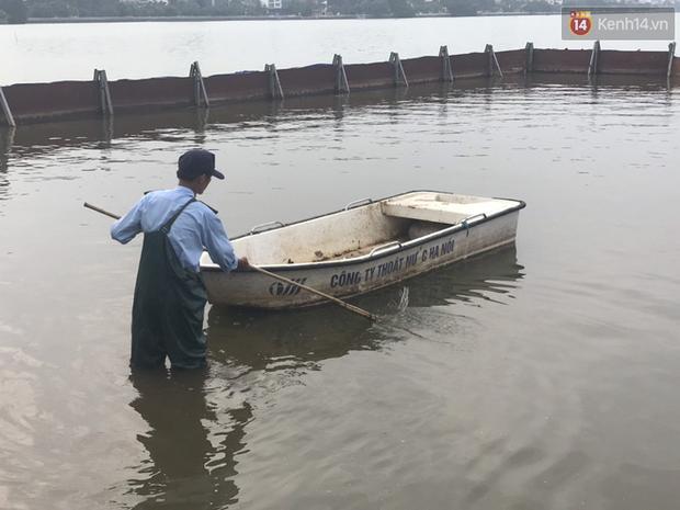 Cá Koi chết sau 2 ngày được thả xuống sông Tô Lịch, bảo vệ túc trực ngày đêm - Ảnh 12.