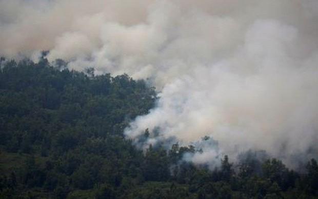 Bloomberg: Không khí ở Singapore, Kuala Lumpur và Jakarta ô nhiễm bậc nhất thế giới - Ảnh 1.