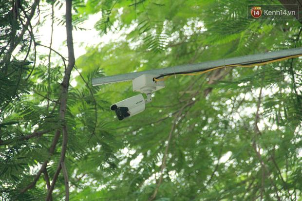 Cá Koi chết sau 2 ngày được thả xuống sông Tô Lịch, bảo vệ túc trực ngày đêm - Ảnh 10.