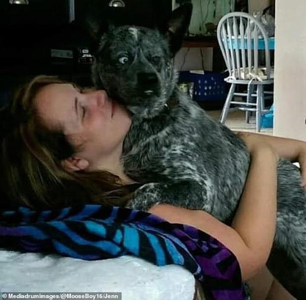 Câu chuyện cảm động đằng sau những bức ảnh đáng yêu của chú chó hạnh phúc nhất thế giới - Ảnh 4.