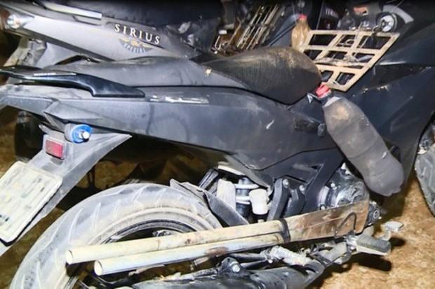 Chiếc hầm bí mật trong đường dây trộm hơn 100 tấn chó ở Thanh Hóa - Ảnh 2.
