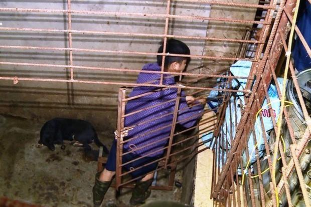 Chiếc hầm bí mật trong đường dây trộm hơn 100 tấn chó ở Thanh Hóa - Ảnh 3.