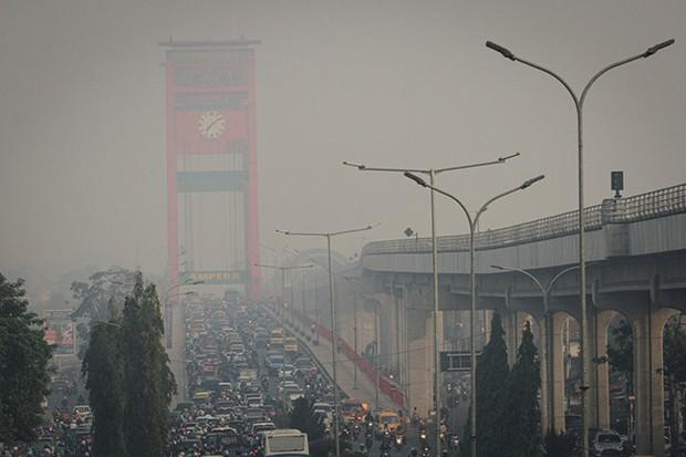 Cháy rừng Indonesia khiến các nước láng giềng nghẹt thở  - Ảnh 4.