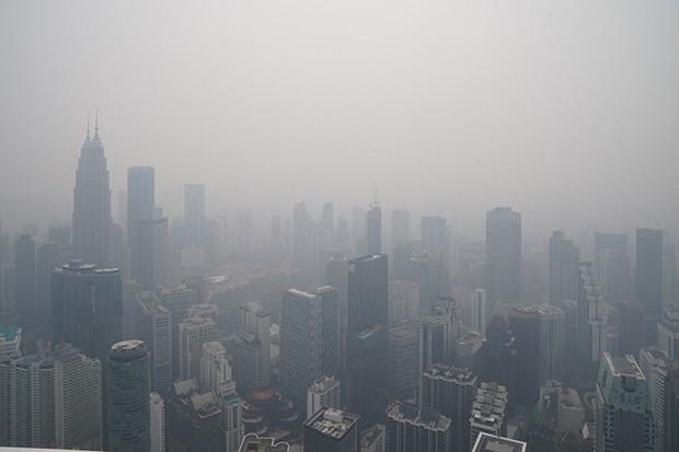 Cháy rừng Indonesia khiến các nước láng giềng nghẹt thở  - Ảnh 6.