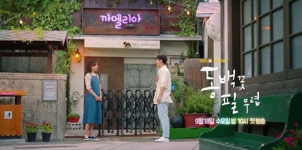 """Chị mẹ đơn thân"""" Gong Hyo Jin ở không rù quến trai trẻ Kang Ha Neul ngay tập 1 Khi Cây Trà Trổ Hoa - Ảnh 1."""