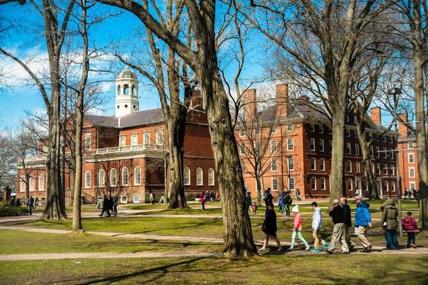 Lương của sinh viên Harvard mới ra trường đã lên đến 1.6 tỷ đồng nhưng vẫn thấp hơn nhiều trường khác trong khối Ivy League - Ảnh 1.