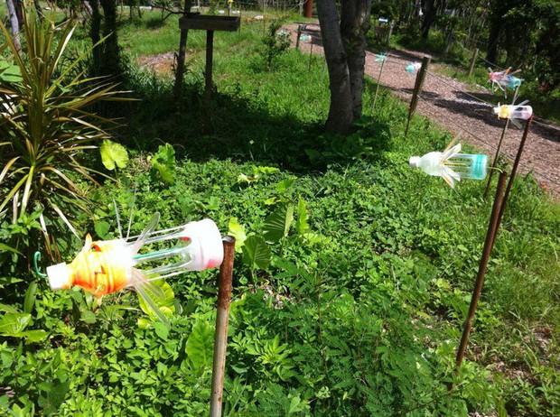 Bỏ túi 15 cách tái sử dụng siêu đơn giản giúp hô biến chai nhựa bỏ đi thành những vật dụng hữu ích - Ảnh 12.