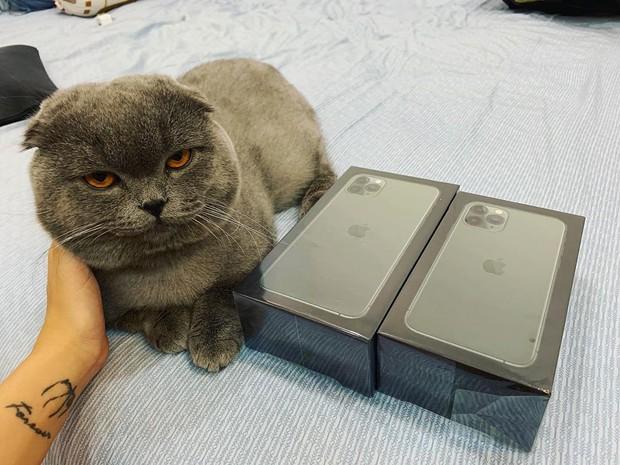 Gato hết biết với Linh Ngọc Đàm khi được bạn trai tặng ngay iPhone 11 mới trình làng: Đúng là người yêu nhà người ta! - Ảnh 3.