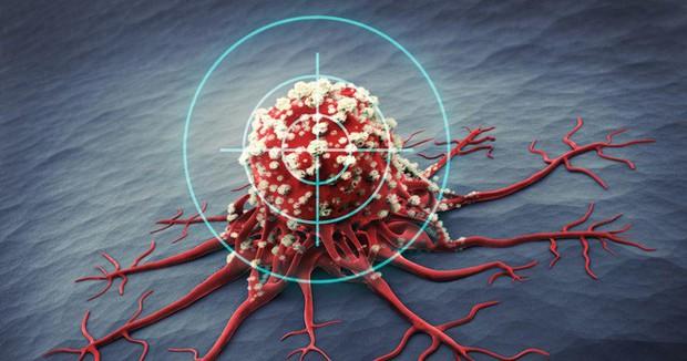 Tới 97% thử nghiệm thuốc chữa ung thư thất bại: Có phải các nhà nghiên cứu đã đi lạc đường? - Ảnh 3.