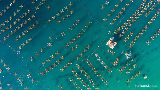 Được cả National Geographic vinh danh, loạt cảnh đẹp nhìn từ trên cao này là minh chứng cho câu nói: Việt Nam mình đẹp lắm! - Ảnh 6.