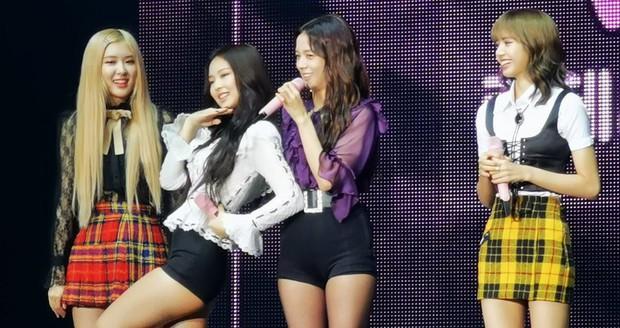 Vào mà xem BLACKPINK nhảy sexy mà như tấu hài, diễn lại bài dance cover đình đám hồi pre-debut làm fan xấu hổ không dám nhận idol - Ảnh 5.