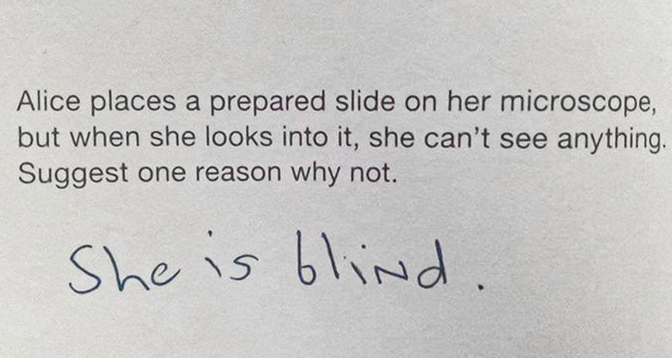 Chào thua trước những câu trả lời bá đạo của hội học trò, thầy cô giáo xem xong chỉ biết câm nín không muốn nói gì thêm - Ảnh 5.