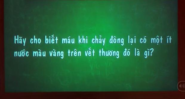 Sao Việt và những lần sai kiến thức căn bản trên truyền hình: Phạm Hương không biết về huyết tương, Thuỳ Anh nói mèo đẻ trứng, Minh Hương cho rằng Pháp gần... Úc! - Ảnh 1.