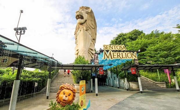 HOT: Bức tượng sư tử biển nổi tiếng trên đảo Sentosa ở Singapore sắp bị dỡ bỏ, dân mạng tiếc nuối tranh cãi dữ dội - Ảnh 4.