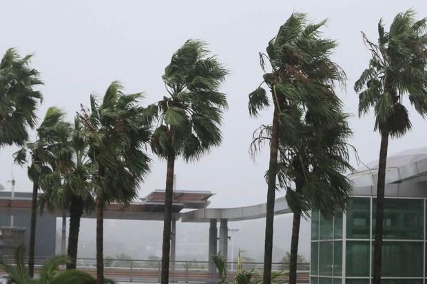 Mưa lớn, gió lốc do bão Tapah, Hàn Quốc phải hủy hàng trăm chuyến bay - Ảnh 1.