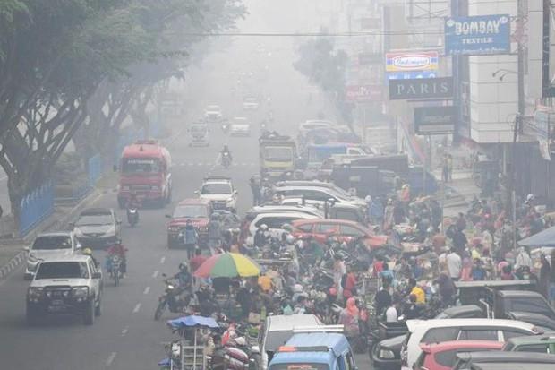 Indonesia: Chất lượng không khí của thủ đô khói mù xuống thấp kỷ lục  - Ảnh 2.