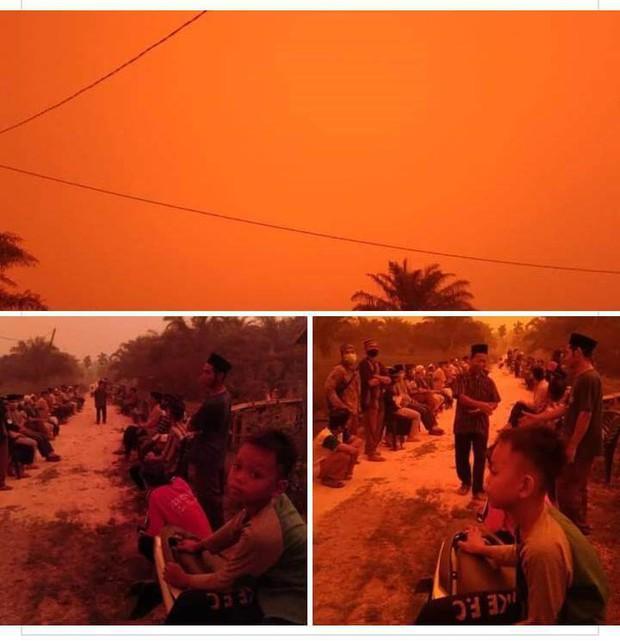 Những đợt cháy rừng tồi tệ khiến bầu trời ở Indonesia chuyển màu đỏ như máu - Ảnh 1.