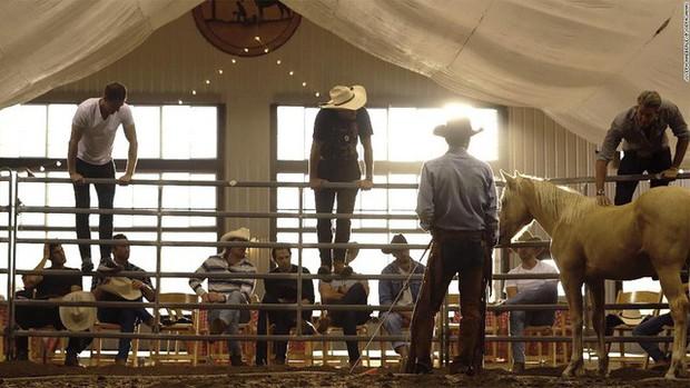 Kỳ lạ giới doanh nhân, CEO đổ xô đi xem huấn luyện ngựa: Đừng nghĩ đây là trò vô bổ, nghệ thuật lãnh đạo đằng sau mới là điều đáng ngẫm! - Ảnh 3.