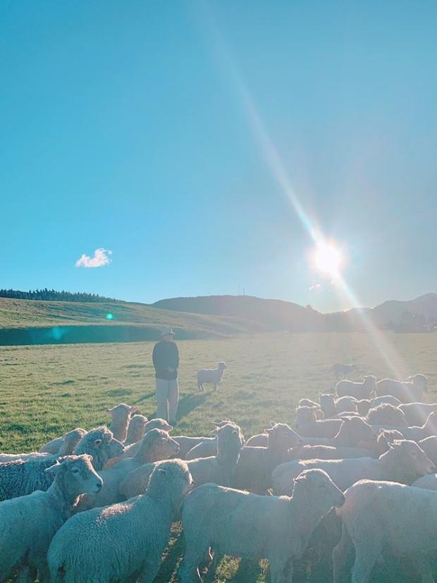 Vừa mới quay trở lại Twitter, V (BTS) đã khiến dân tình náo loạn với loạt ảnh du lịch New Zealand đẹp như poster phim điện ảnh vậy! - Ảnh 6.