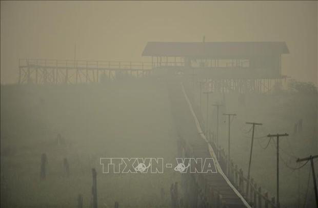 Hơn 900.000 Indonesia người bị bệnh về đường hô hấp do cháy rừng - Ảnh 1.