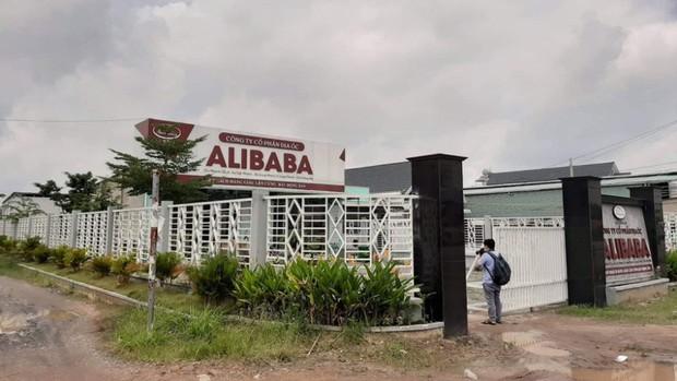 Công an triệu tập vợ và em của Chủ tịch Alibaba Nguyễn Thái Luyện - Ảnh 1.