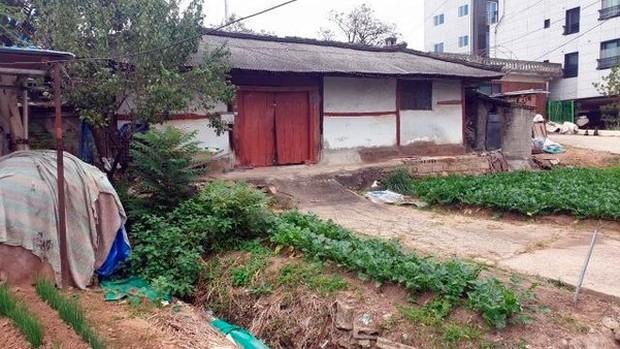 Nghi phạm trong vụ giết người hàng loạt đầu tiên ở Hàn lộ diện sau 33 năm: Đội lốt người lương thiện, từng cưỡng bức và giết hại em vợ - Ảnh 2.