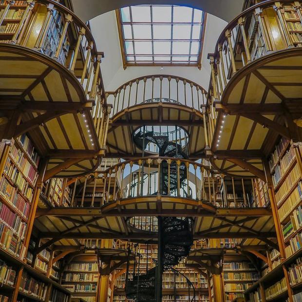 Đừng vội chê thư viện nhàm chán nếu như bạn chưa bao giờ biết đến địa điểm sang chảnh và lộng lẫy này! - Ảnh 3.