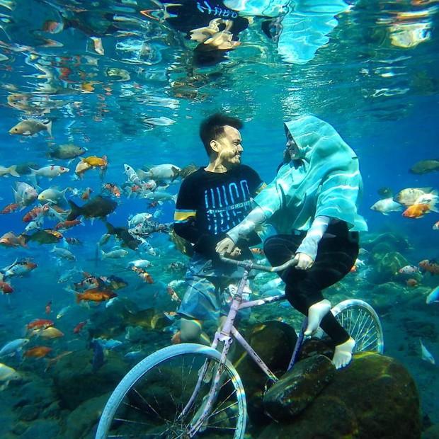 """Chuyện lạ có thật: Cái """"ao làng"""" nhưng chất lượng vươn lên hàng quốc tế, du khách đến Indonesia phải đua nhau tìm đến sống ảo - Ảnh 5."""