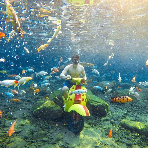 """Chuyện lạ có thật: Cái """"ao làng"""" nhưng chất lượng vươn lên hàng quốc tế, du khách đến Indonesia phải đua nhau tìm đến sống ảo - Ảnh 18."""