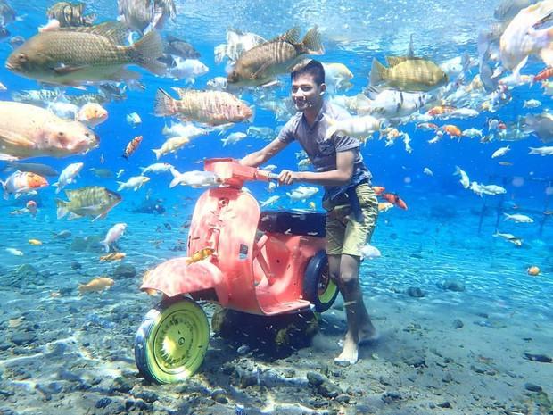 """Chuyện lạ có thật: Cái """"ao làng"""" nhưng chất lượng vươn lên hàng quốc tế, du khách đến Indonesia phải đua nhau tìm đến sống ảo - Ảnh 6."""