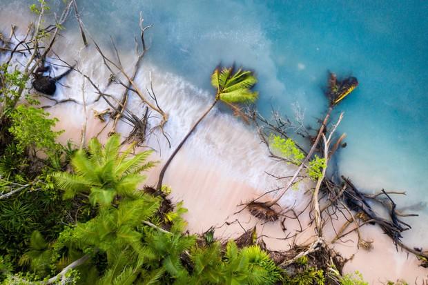 Thông điệp ý nghĩa về môi trường qua loạt ảnh đạt giải CIWEM 2019: Việt Nam góp mặt với một tác phẩm lọt top ấn tượng - Ảnh 2.