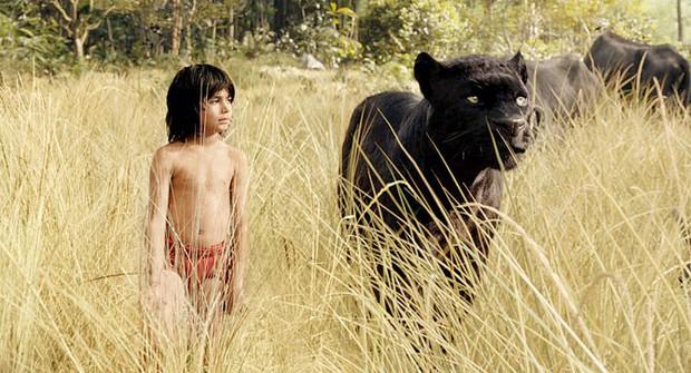 Khi các cô cậu bé dám bật lại người lớn để bảo vệ môi trường: Cô số 1 như phiên bản trên phim của Greta Thunberg! - Ảnh 4.