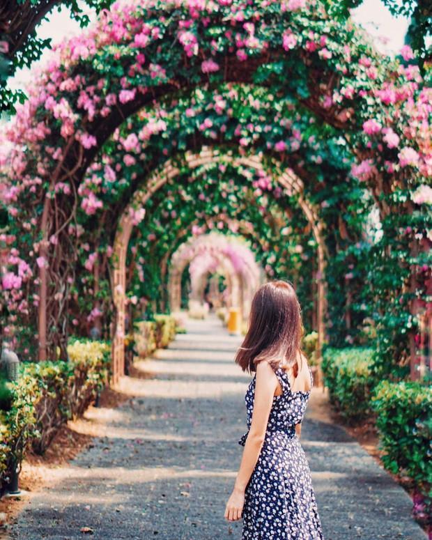 Con đường hoa ảo diệu ở Singapore được các travel blogger lăng xê nhiệt tình thực chất là một cái... nghĩa trang! - Ảnh 20.