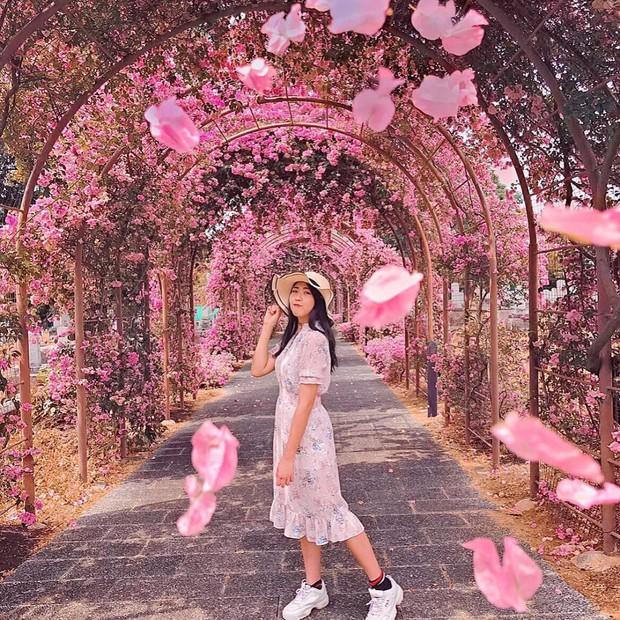 Con đường hoa ảo diệu ở Singapore được các travel blogger lăng xê nhiệt tình thực chất là một cái... nghĩa trang! - Ảnh 14.