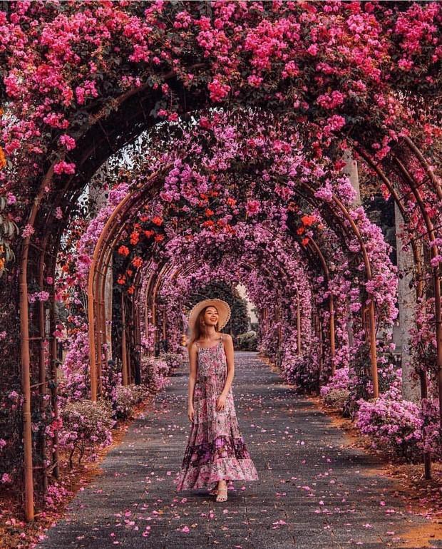 Con đường hoa ảo diệu ở Singapore được các travel blogger lăng xê nhiệt tình thực chất là một cái... nghĩa trang! - Ảnh 2.