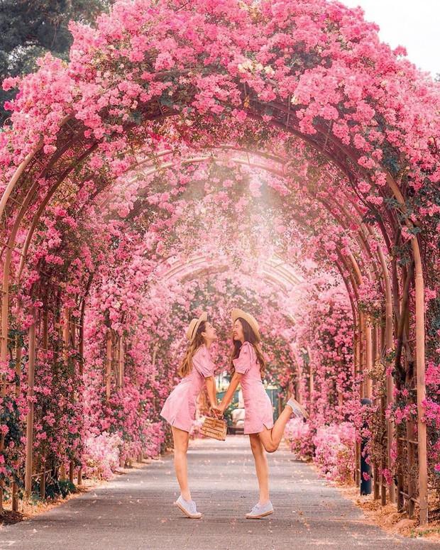 Con đường hoa ảo diệu ở Singapore được các travel blogger lăng xê nhiệt tình thực chất là một cái... nghĩa trang! - Ảnh 1.