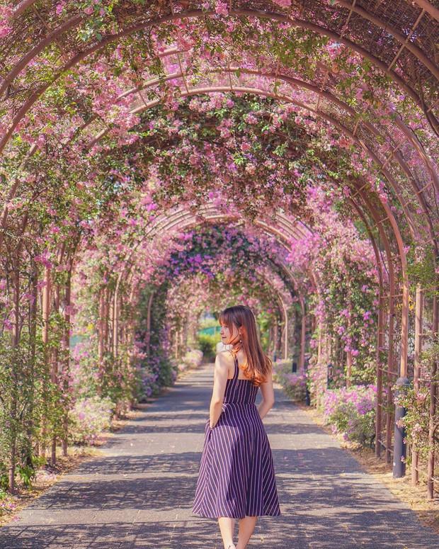Con đường hoa ảo diệu ở Singapore được các travel blogger lăng xê nhiệt tình thực chất là một cái... nghĩa trang! - Ảnh 23.