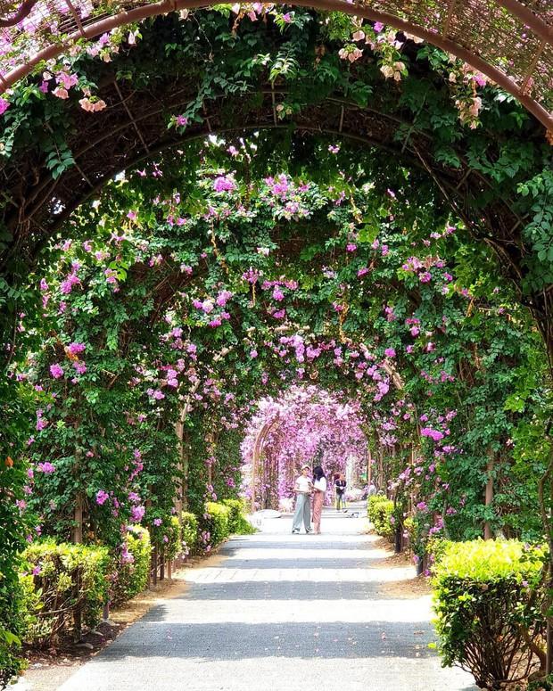 Con đường hoa ảo diệu ở Singapore được các travel blogger lăng xê nhiệt tình thực chất là một cái... nghĩa trang! - Ảnh 22.