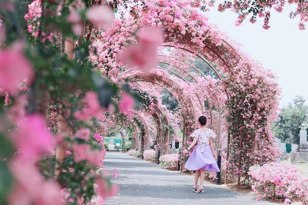 Con đường hoa ảo diệu ở Singapore được các travel blogger lăng xê nhiệt tình thực chất là một cái... nghĩa trang! - Ảnh 21.