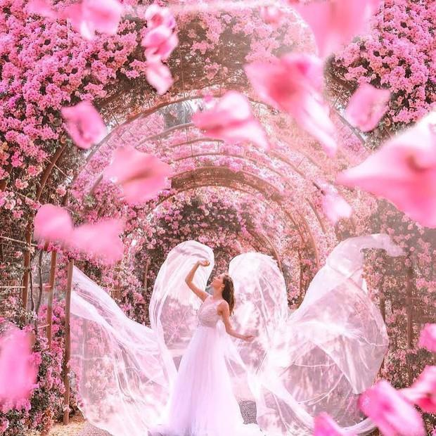 Con đường hoa ảo diệu ở Singapore được các travel blogger lăng xê nhiệt tình thực chất là một cái... nghĩa trang! - Ảnh 12.