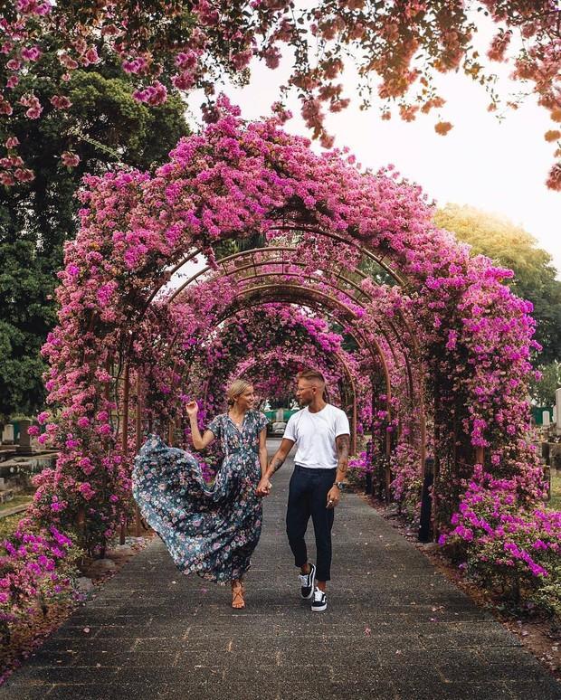Con đường hoa ảo diệu ở Singapore được các travel blogger lăng xê nhiệt tình thực chất là một cái... nghĩa trang! - Ảnh 11.