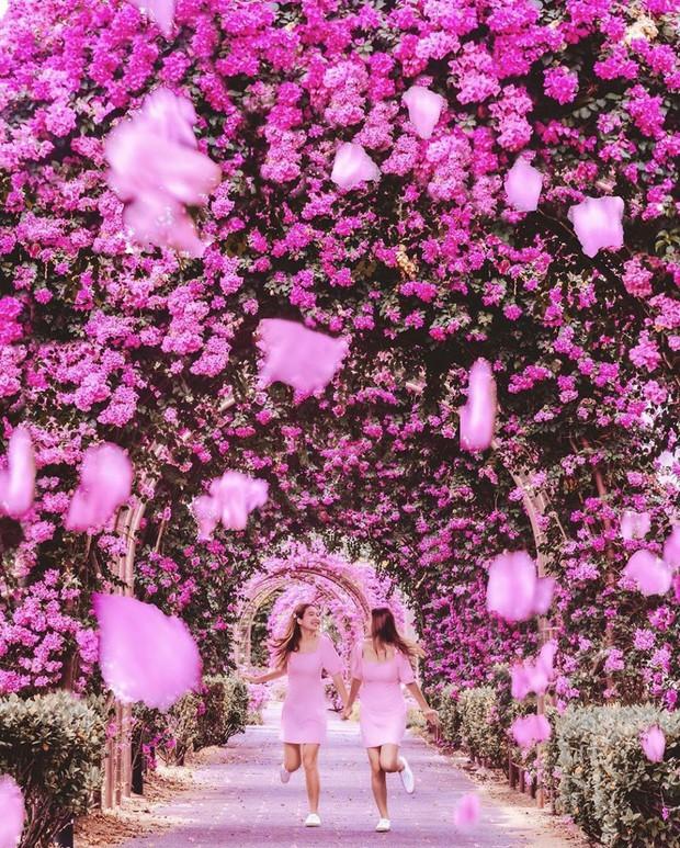 Con đường hoa ảo diệu ở Singapore được các travel blogger lăng xê nhiệt tình thực chất là một cái... nghĩa trang! - Ảnh 10.