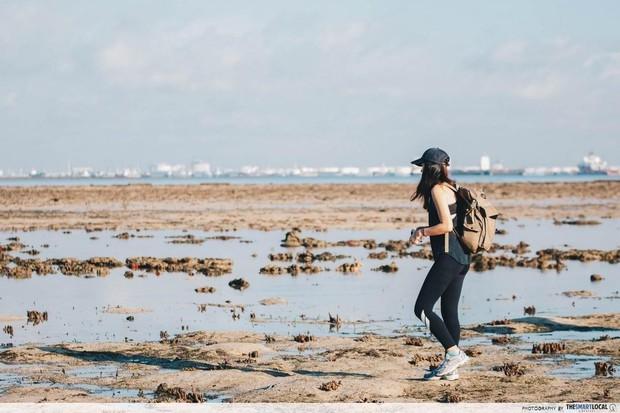 Không thể tin nổi: Bãi rác trị giá 360 triệu USD trở thành… địa điểm du lịch hút khách ở Singapore, phải đặt trước 4 tháng mới đến lượt - Ảnh 9.