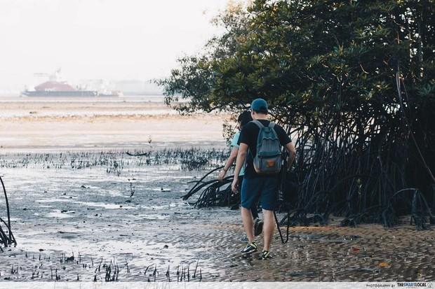 Không thể tin nổi: Bãi rác trị giá 360 triệu USD trở thành… địa điểm du lịch hút khách ở Singapore, phải đặt trước 4 tháng mới đến lượt - Ảnh 8.