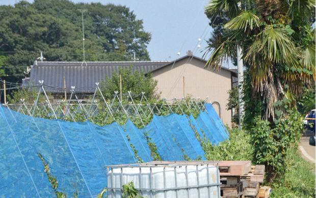 Một người Việt 21 tuổi bị bắt giữ vì đâm hai vợ chồng cụ già khiến một người tử vong ở Nhật Bản - Ảnh 2.