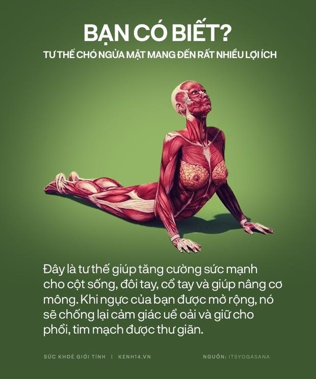 Bạn có biết: 10 tư thế yoga đơn giản sau đây đều có tác dụng rất tốt cho sức khoẻ và tinh thần - Ảnh 5.