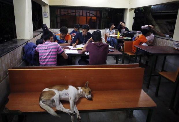 Lớp học ngoài đường ở Mumbai: Mảng tối tại thành phố thịnh vượng bậc nhất Ấn Độ và sự thích nghi đầy cảm phục của trẻ em nghèo hiếu học - Ảnh 8.