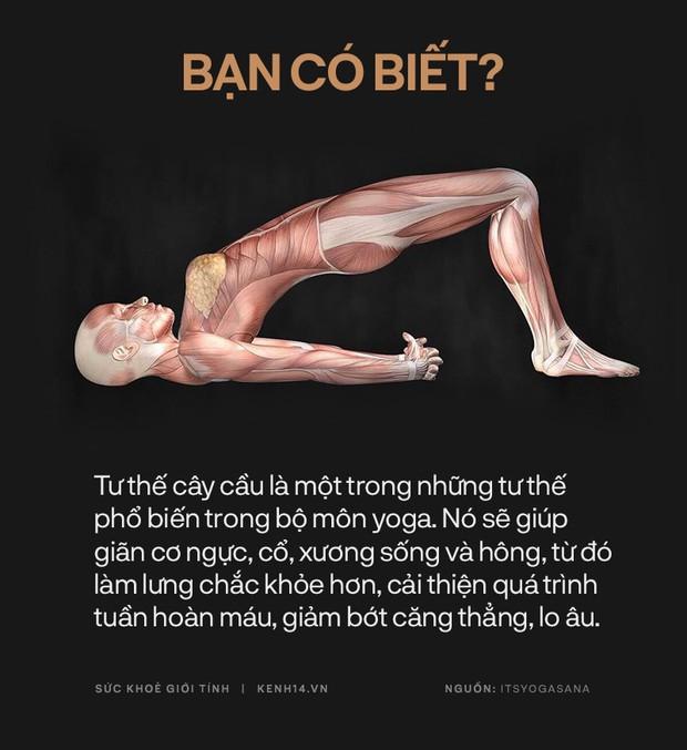 Bạn có biết: 10 tư thế yoga đơn giản sau đây đều có tác dụng rất tốt cho sức khoẻ và tinh thần - Ảnh 17.