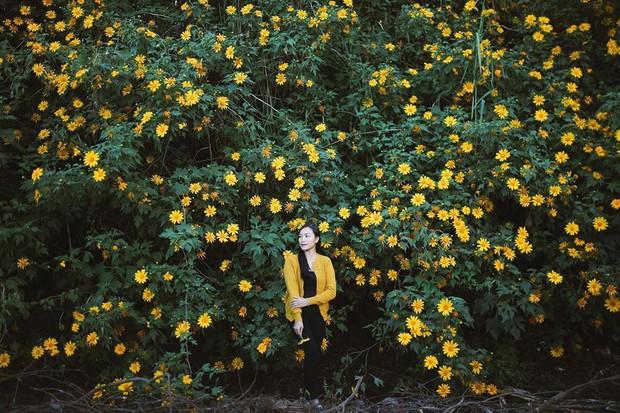 """Rực rỡ khắp newsfeed 9 cung đường săn hoa dã quỳ đẹp nhất Đà Lạt: Ơn giời, """"mùa vàng"""" của hội sống ảo đây rồi! - Ảnh 11."""